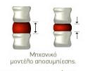Μηχανικό μοντέλο αποσυμπίεσης